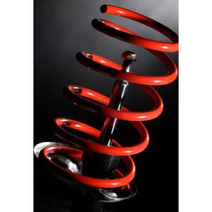 Ressorts H&RRenault Clio 3 RS / Sport Fastlift >07.10 -20mm
